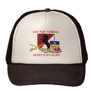 1ST SQUADRON 221ST CAVALRY HAT