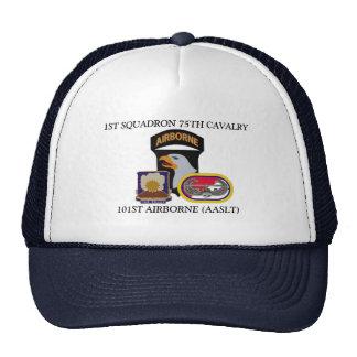 1ST SQUADRON 75TH CAVALRY 101ST AIRBORNE HAT