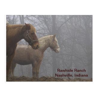 20071221_0021_r1, Rawhide RanchNashville, Indiana Postcard