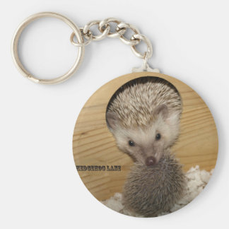 20081206_0055, Moving Hedgehog Key Ring
