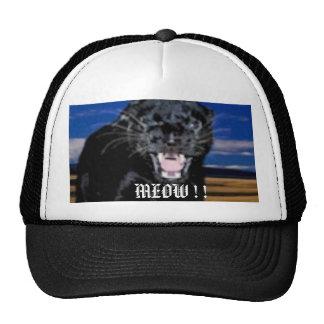 2008-02-12_104656, MEOW ! ! TRUCKER HAT