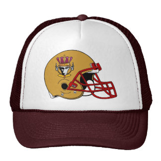2009 D Crownholders Helmet Hat