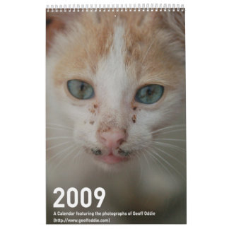 2009 Photography calender Wall Calendars