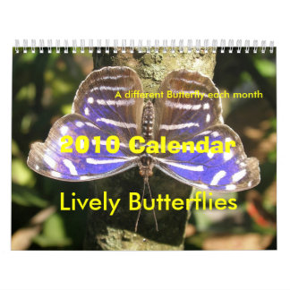 2010 Butterfly Calendar