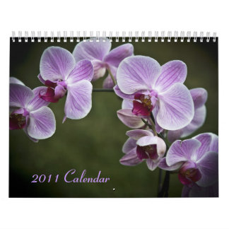 2011 Calendar - Flowers