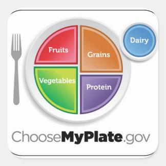 2011 Food Pyramid Choose My Plate sticker