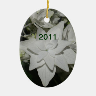 2011 Ornament