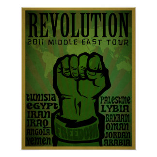 2011 Revolution Print