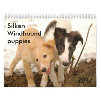 2011 Silken Windhound puppies Wall Calendar