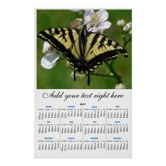 2011 Western SwallowTail Butterfly wall Calendar Posters