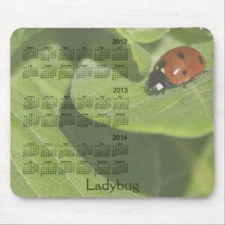 2012-2014 Ladybug Calendar Mousepad