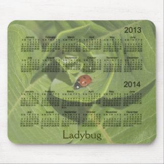 2013-2014 Ladybug Calendar Mousepad