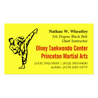 2013 Fall TKD card Pack Of Standard Business Cards