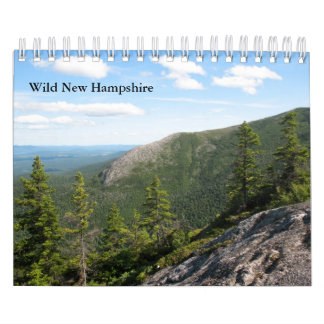 2013 Small Wild New Hampshire Wall Calendar