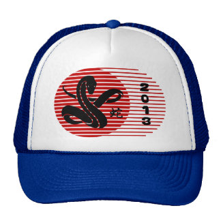 2013 Year of The Snake Cap