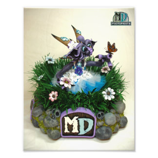 2014 MD Butterfly Dragon PhotoPrint Photo Print