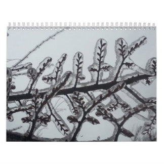 2014 Nature Themed Wall Calendar