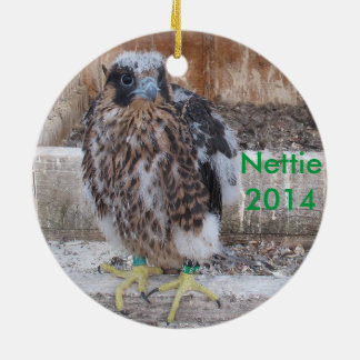 2014 Nettie Ornament