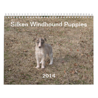 2014 Silken Windhound Puppies 1-2 Calendar