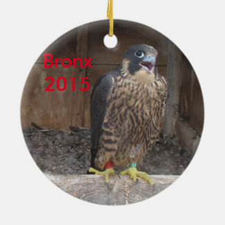 2015 Bronx Ornament