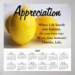 2015 Demotivational Calendar Appreciation Poster
