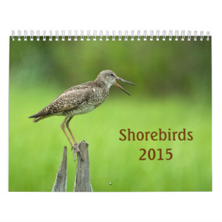 2015 Shorebirds Calendar