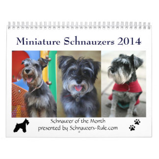 2016 Mini Schnauzer Calendar