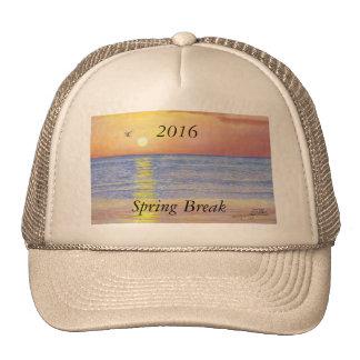 2016 SPRING BREAK SUNSET SEAGULL TRUCKER HAT
