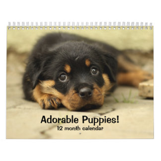 2017 Adorable Puppies Twelve Month Dog Calendar