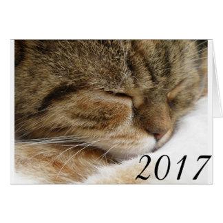 2017 Cat Card
