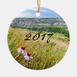 2017 Christmas Ornament