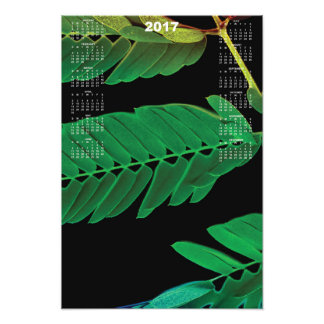2017 Fern Calendar Poster Art Photo