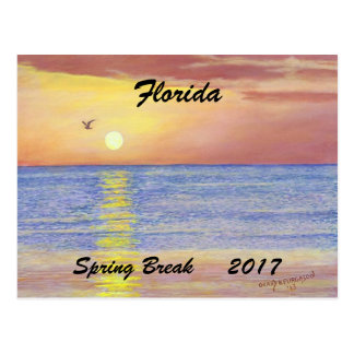 2017 FLORIDA SUNSET SEAGULL SPRING BREAK POSTCARD