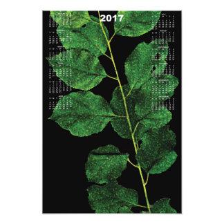 2017 Ivy Calendar Poster Photograph