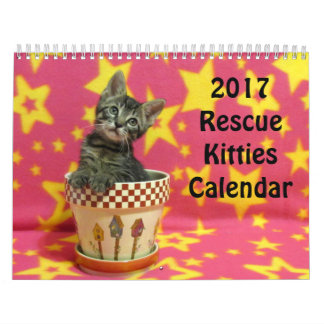 2017 Rescue Kitties Calendar *** New for 2017 ***