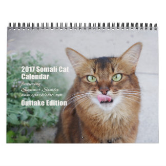 2017 Somali Cat featuring Summer Samba (Outtakes) Wall Calendars