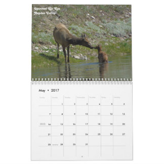 2017 Yellowstone National Park Calendar