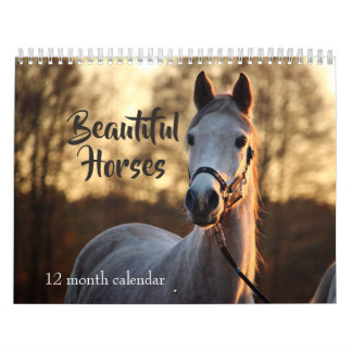 2018 Beautiful Horses Wall Calendars