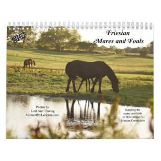 2018 Friesian Mares and Foals Calendar