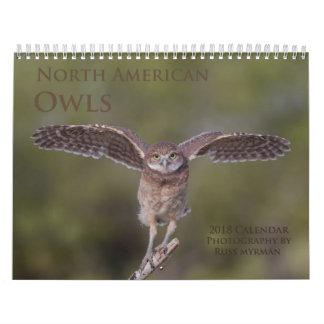 2018 North American Owl Wall Calendar