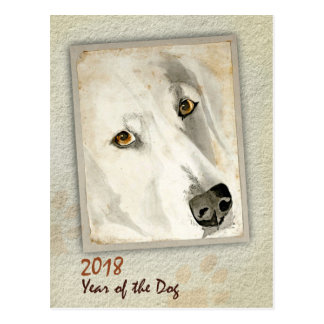 2018 Year of the Dog Soulful Eyes White Dog Postcard