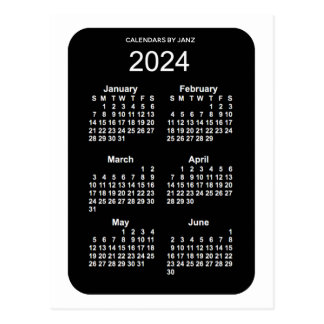 2024 White Neon 6 Month Mini Calendar by Janz Postcard
