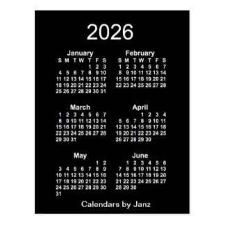 2026 Neon White 6 Month Mini Calendar by Janz Postcard