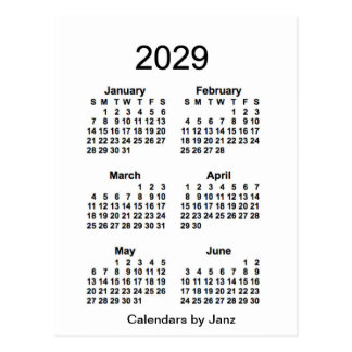 2029 White 6 Month Mini Calendar by Janz Postcard