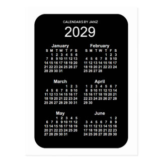 2029 White Neon 6 Month Mini Calendar by Janz Postcard