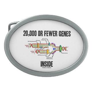 20,000 Or Fewer Genes Inside (DNA Replication) Oval Belt Buckle