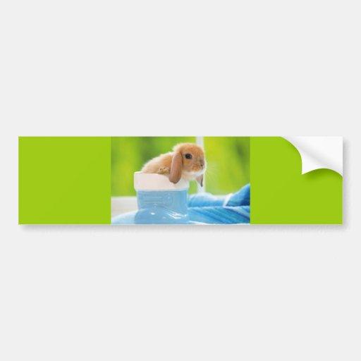 20_baby_animals (4) BABY BUNNY RABBIT blue greens Bumper Sticker