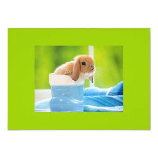 "20_baby_animals (4) BABY BUNNY RABBIT blue greens 5"" X 7"" Invitation Card"