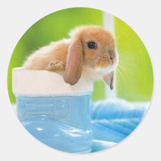 20_baby_animals (4) BABY BUNNY RABBIT blue greens Round Sticker