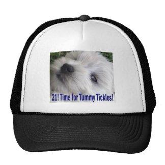 21st Birthday Trucker Hats